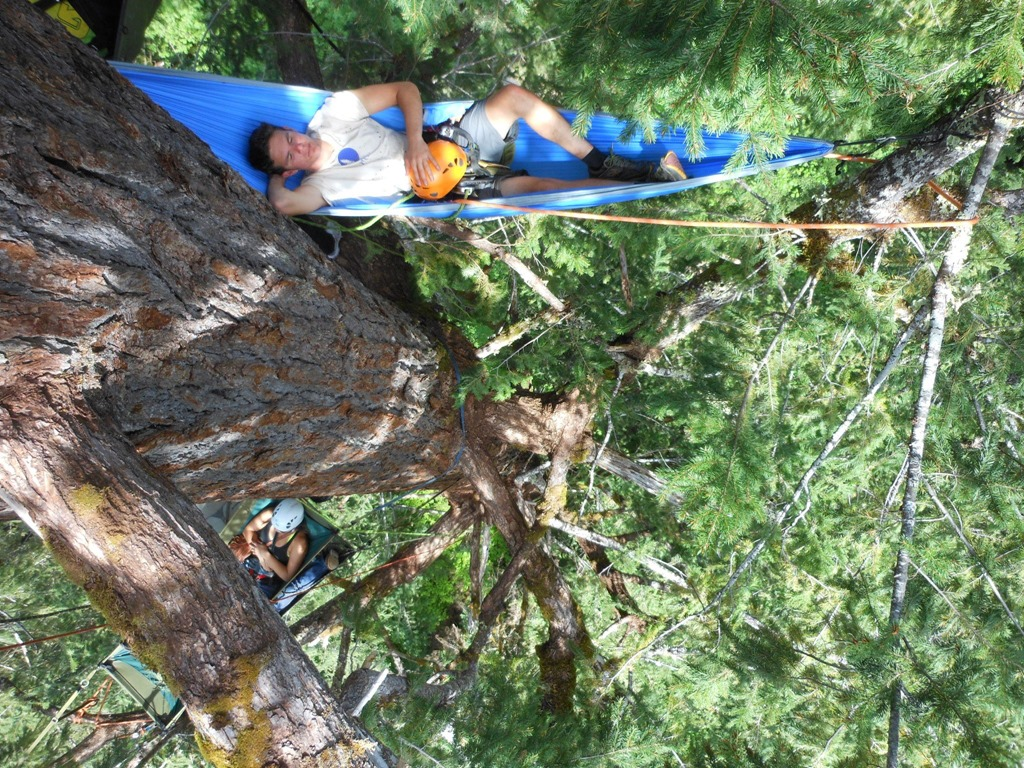 Safety Rules With Hammocks Be Cautious Of Making These